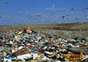 Open_landfill