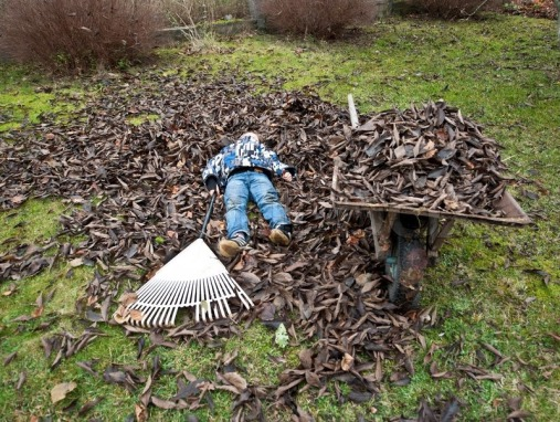 5355304-young-boy-tired-of-raking-leaves